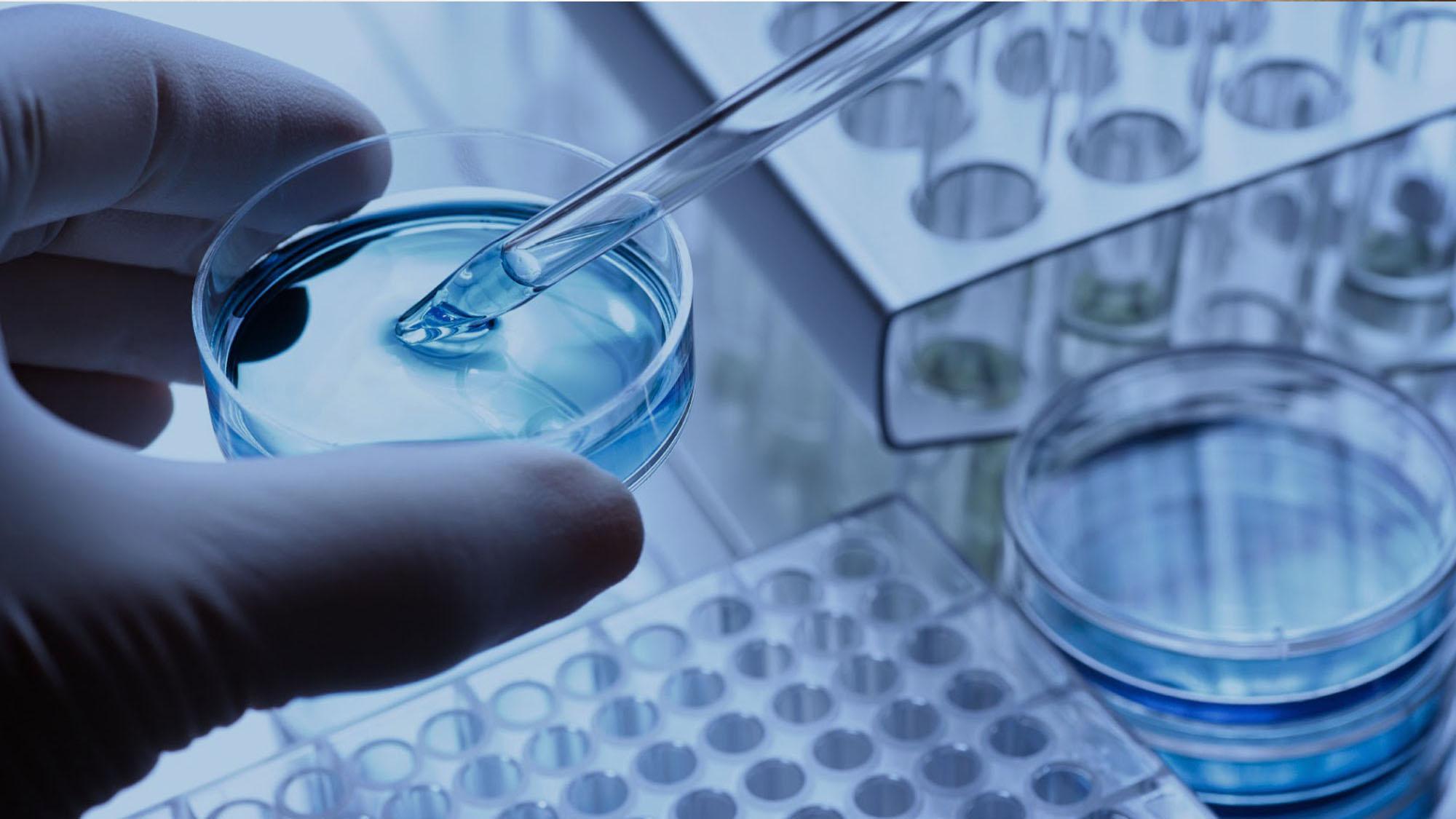 IVF Lab Technician